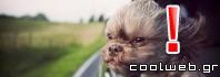 Γιατί τα σκυλιά βγάζουν το κεφάλι τους έξω από το παράθυρο του αυτοκινήτου