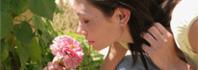 λουλούδια μυρίζουν