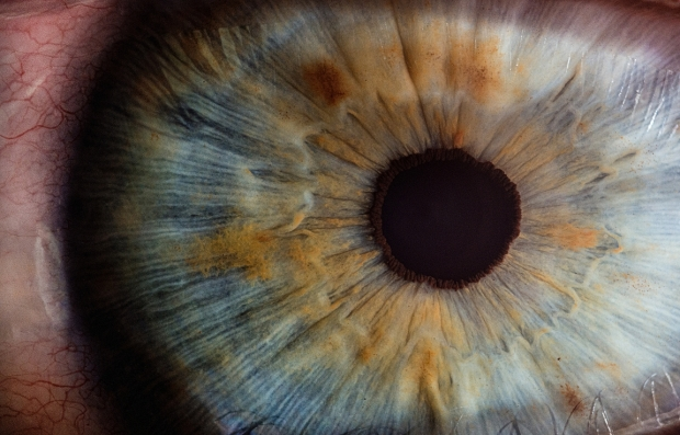 Το φωτισκό φτέρνισμα ίσως προκαλείται από αντίδραση των ματιών μας στο έντονο φως