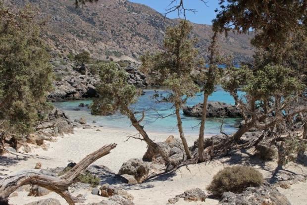 η παραλία Κεδρόδασος δίπλα στο Ελαφονήσι