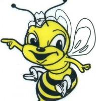 μέλισσες τσιμπάνε