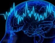 εγκέφαλος και μνήμη