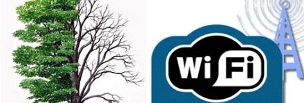bluetooth και wi-fi