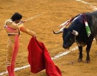 ταύρος και κόκκινο χρώμα