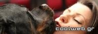 μόλυνση από σκύλο ή γάτα