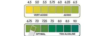 ουδέτερο pH