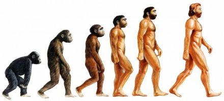 Θεωρία εξέλιξης του Δαρβίνου