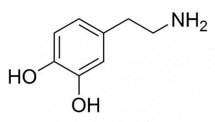 στη ντοπαμίνη οφείλεται η ανατριχίλα που προκαλεί ένα τραγούδι