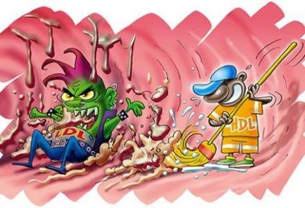 πως λειτουργεί η καλή και η κακή χοληστερόλη