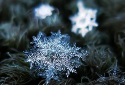 οι νιφάδες του χιονιού είναι διάφανες