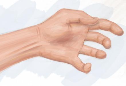 ο μυς στην εσωτερική πλευρά του χεριού μας
