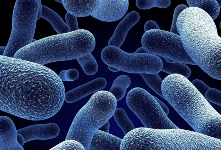 η νόσος των κλιματιστικών οφείλεται σε βακτήριο