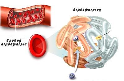 αιμοσφαιρίνη
